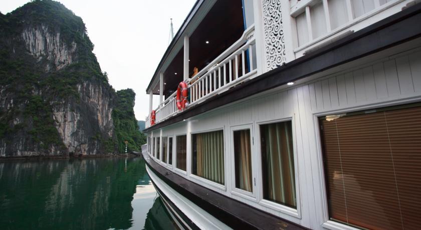 Viola Cruise