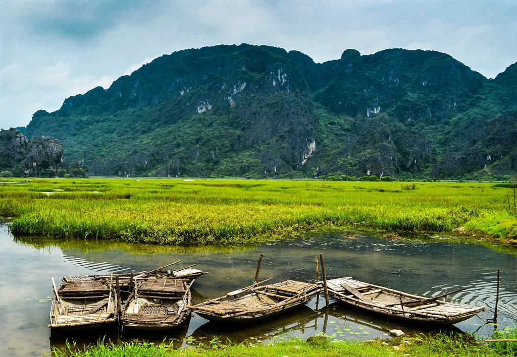 Hoa Lu – Tam Coc 1 day