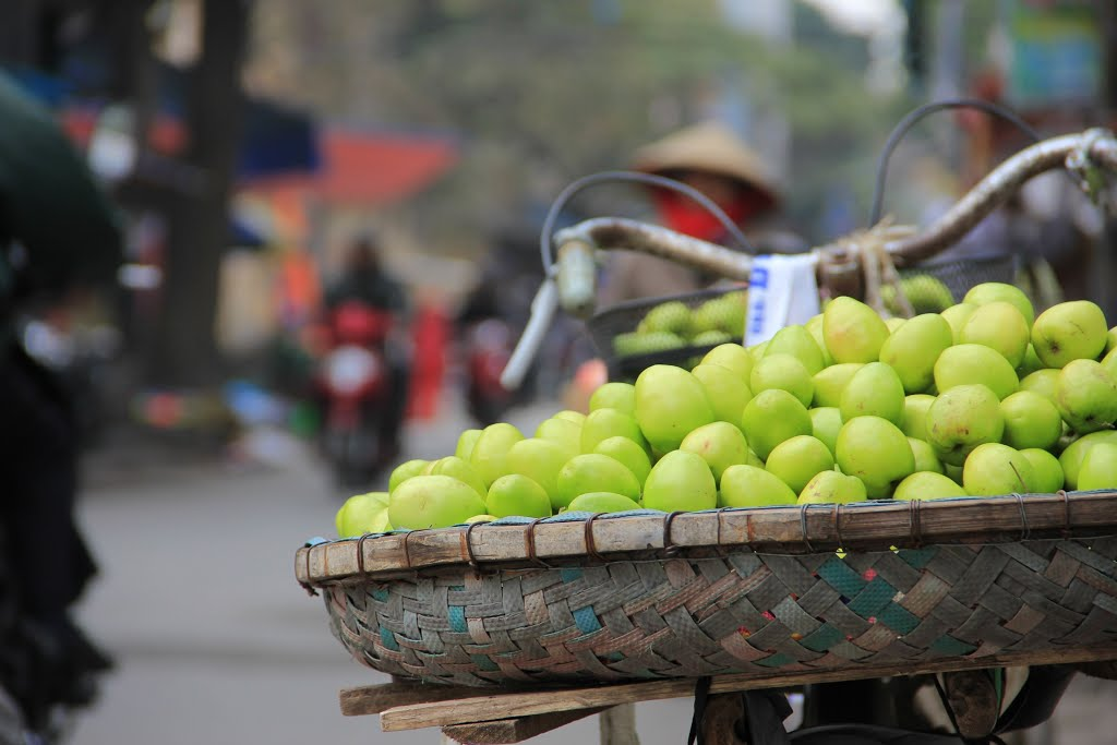 Hanoi City tour 1 day