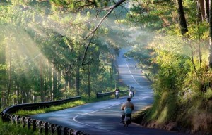Cuc Phuong National Park 1 day
