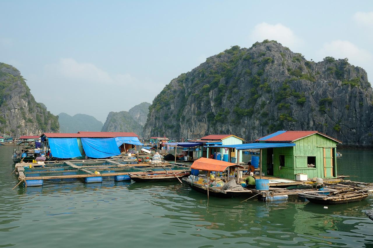 Hanoi – Sapa – Halong Bay 5D/4N