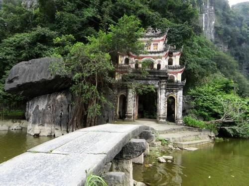 Ninh Binh 1 day – Special Trip